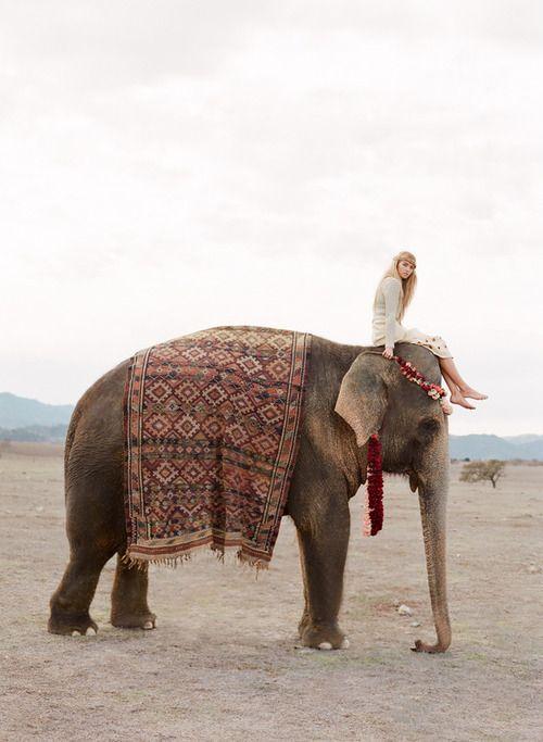 textile india